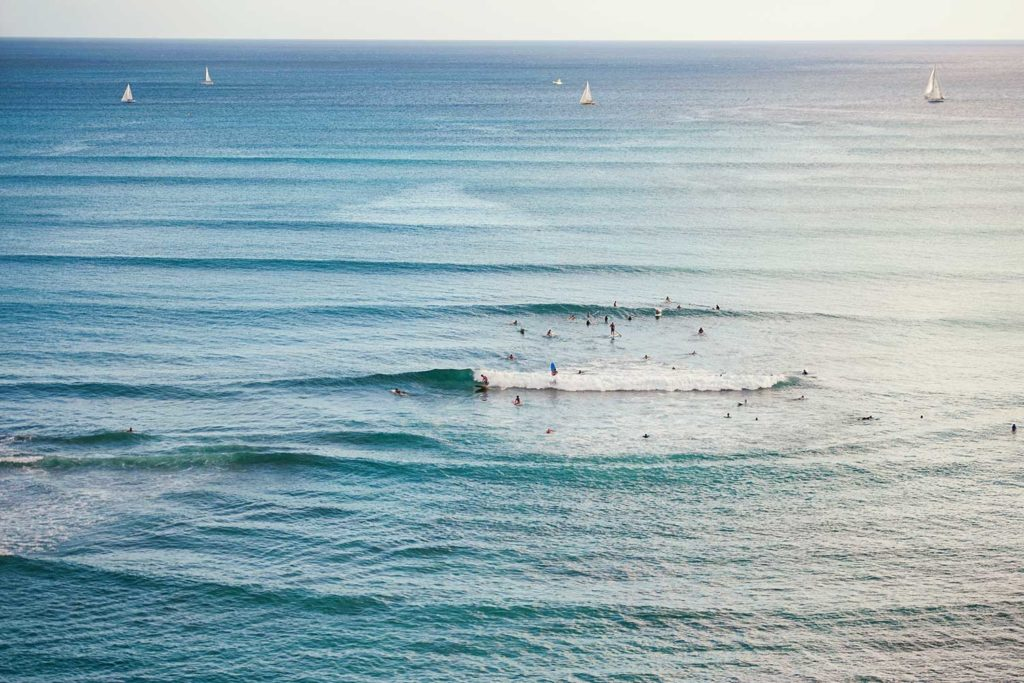 surfers and paddleboards enjoying the ocean