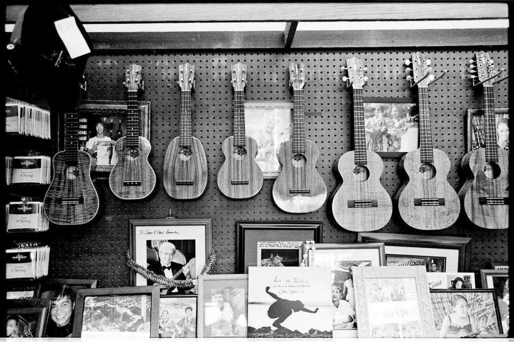 black and white photo of Kamaka ukulele collection