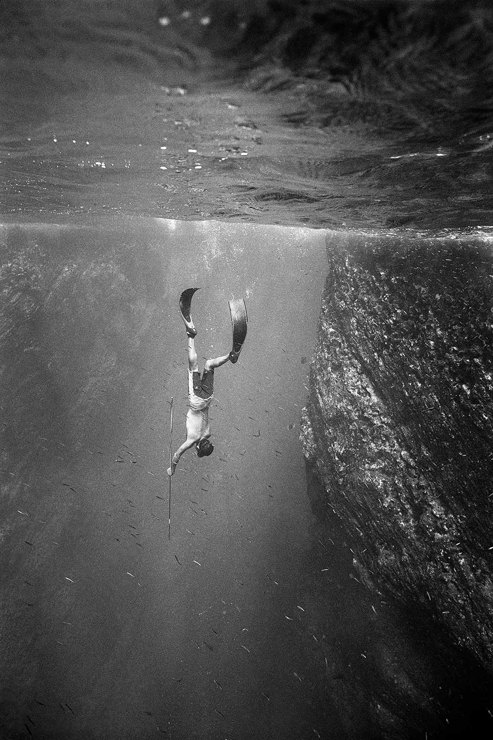 black and white photo of Randy Kosaki spearfishing underwater in ocean