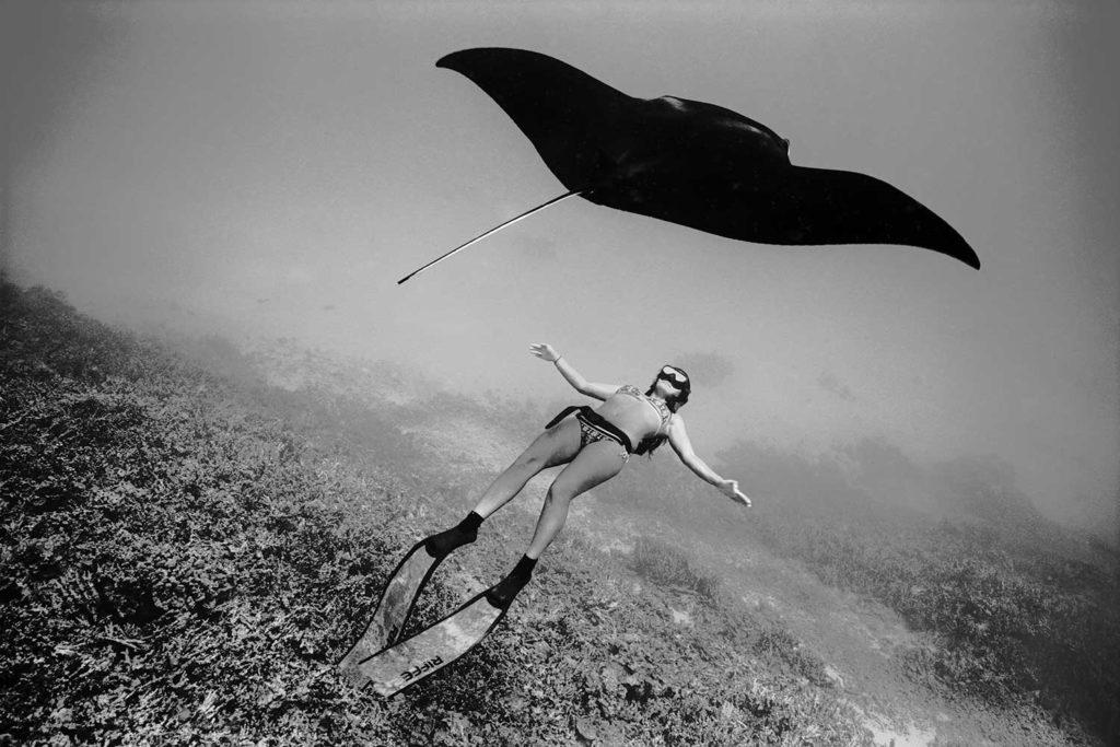black and white photo of Kimi Werner underwater with stingray