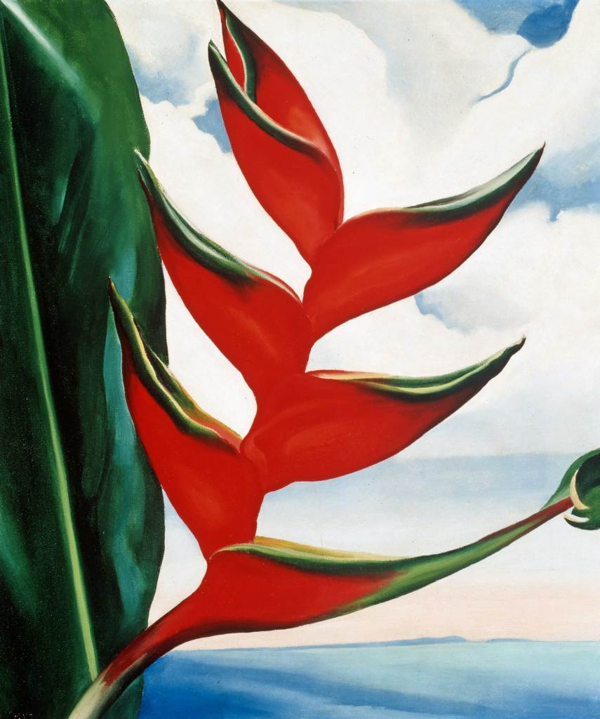 Georgia O'Keeffe. Heliconia, Crabs's Claw Ginger, 1939