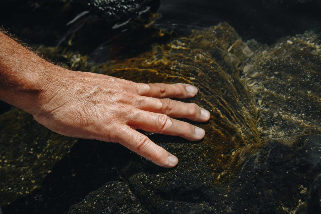 Hand touching a rock in the ocean