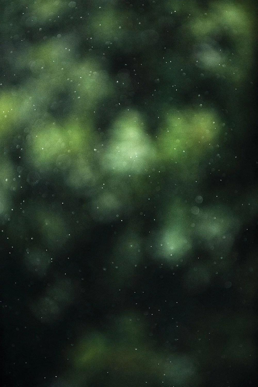Specs of rain
