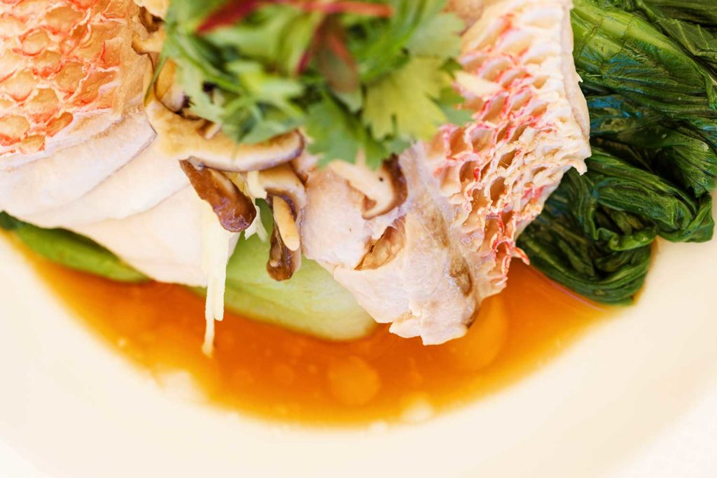 gourmet fish in dish of broth