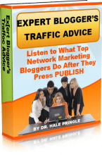 Expert Bloggers Traffic Advice