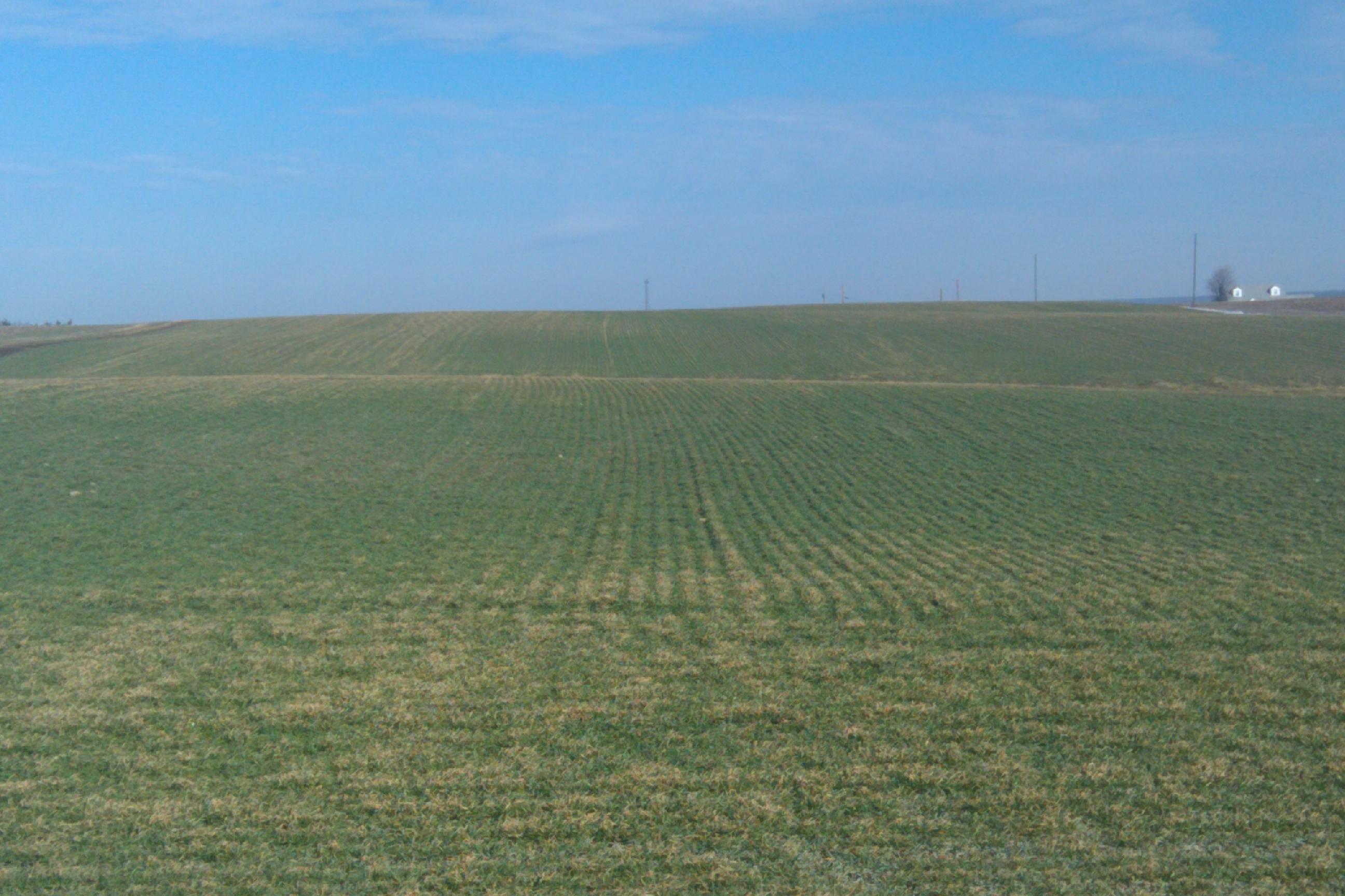 https://i1.wp.com/haley-farms.com/blog/wp-content/uploads/2011/02/IMAG0344.jpg