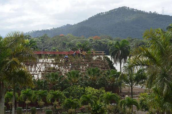 Fields n Farm (17)