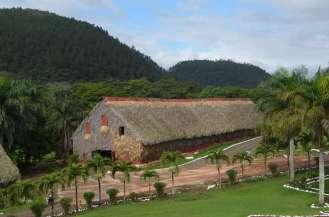 Fields n Farm (25)