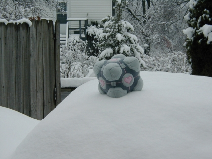 Weighted Companion Cube playing in the snow.