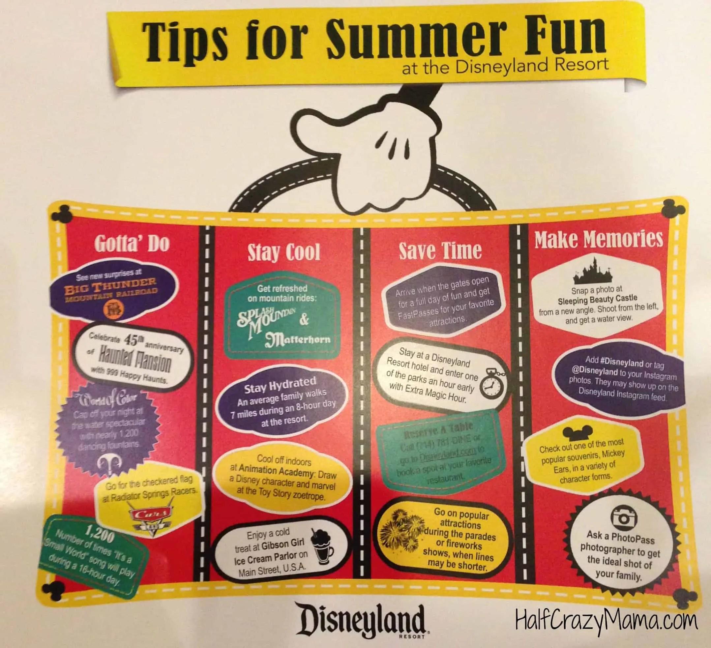 Disneyland Tips InforGraphic