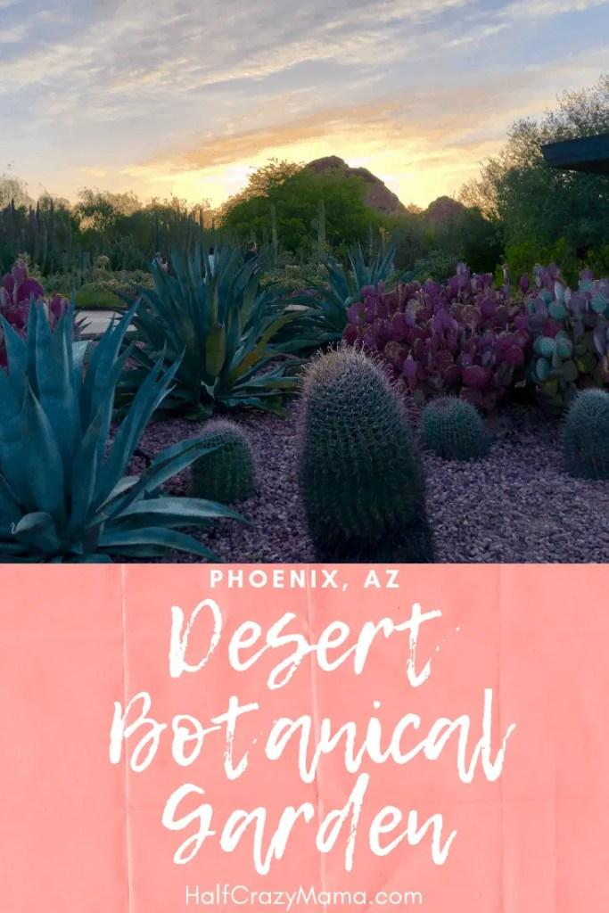 Visiting the Desert Botanical Garden