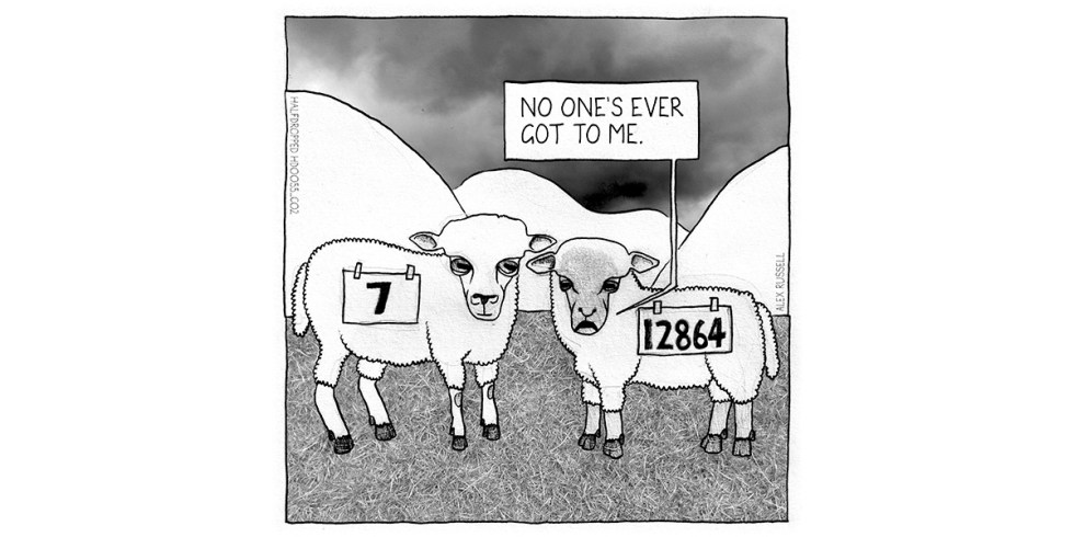 Counting Sheep Halfdropped cartoon