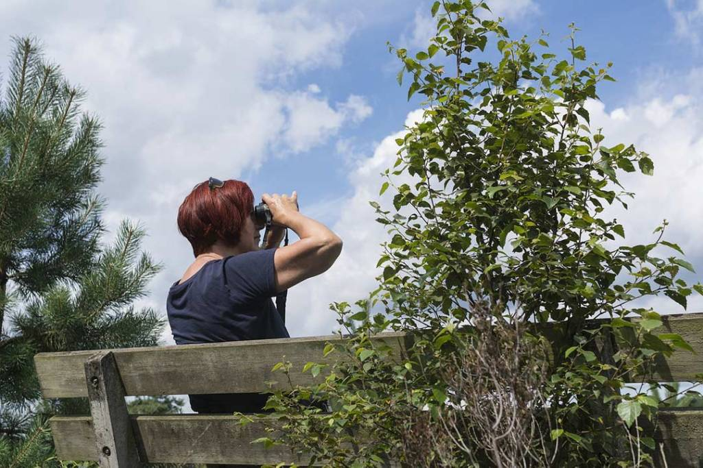 Woman sitting on a park bench looking through binoculars