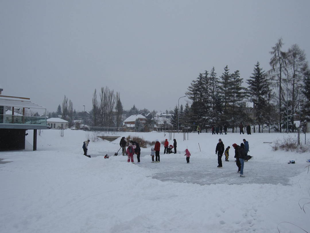 families clearing the ice for skating on a local pond