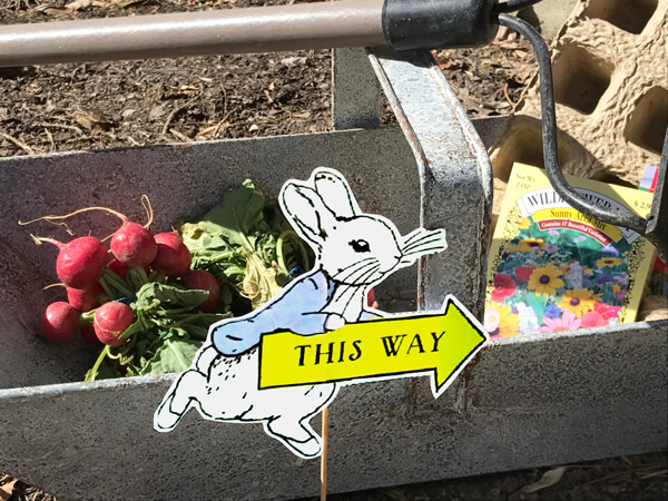 Peter Rabbit in Mr. McGregor's Garden First Birthday Party   Halfpint Design - Peter Rabbit signs directing guests past the garden tools, raddishes, and seeds into the front door.