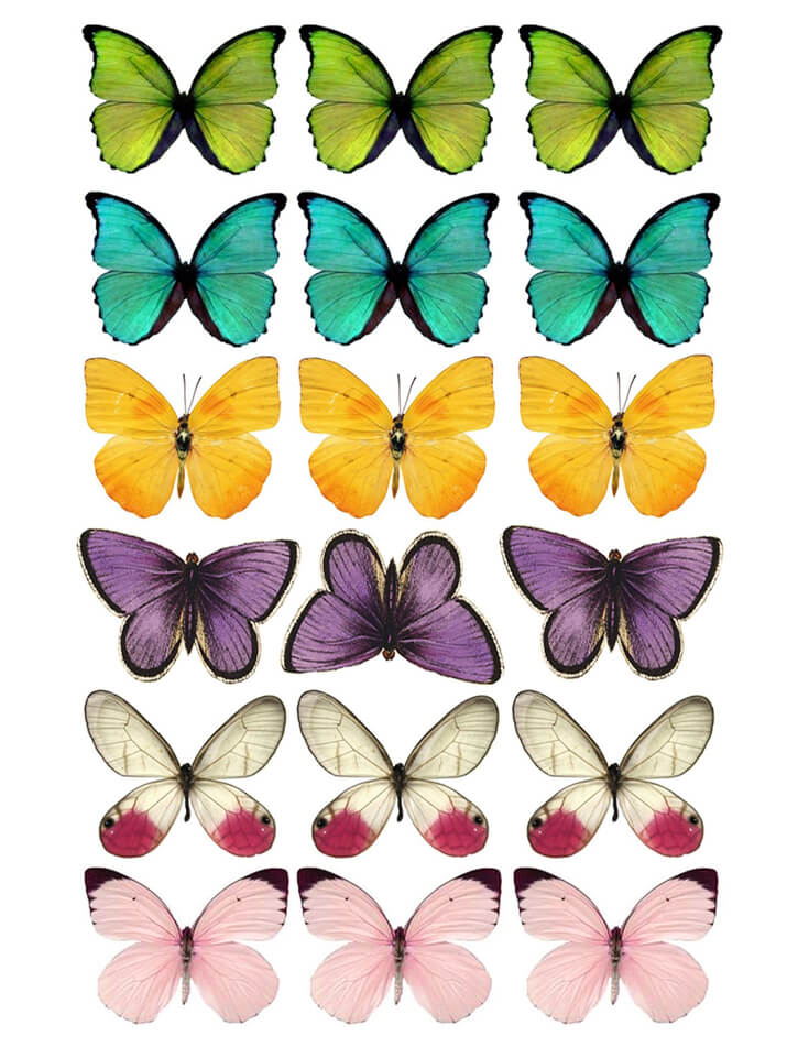 DIY Butterfly Party Favor   Halfpint Design - Colored Butterfly printable. Print PDF file onto white cardstock and cut