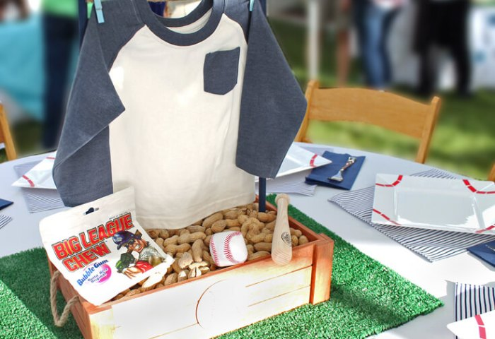 Yankees Baseball Themed Baby Shower
