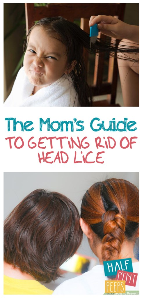 The Mom's Guide to Getting Rid of Head Lice | Head Lice, Head Lice Remedies, Parenting, Parenting Hacks, Parenting TIps and tricks, Mom Hacks