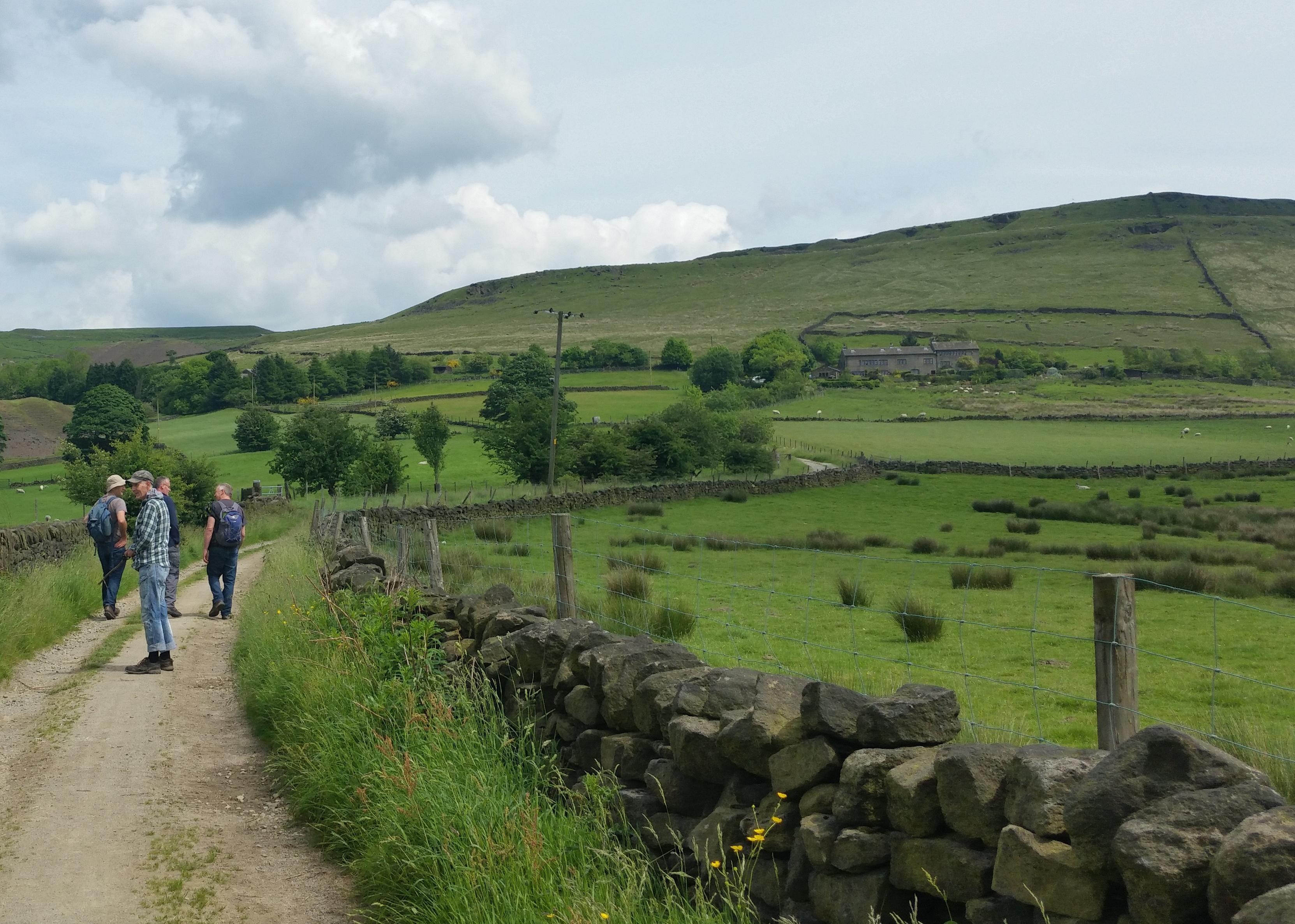 Greenfield Marsden Hike