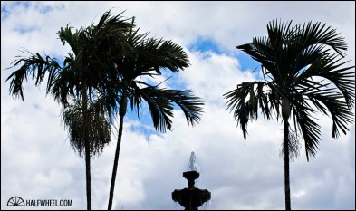 A fountain and palm trees in an open air courtyard in the middle of Plasencia Cigars S.A.