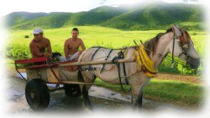 Cuban farmers photo