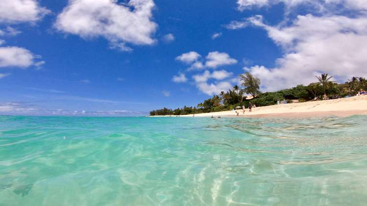 North Shore Hawaii Things to do - Sunset Beach