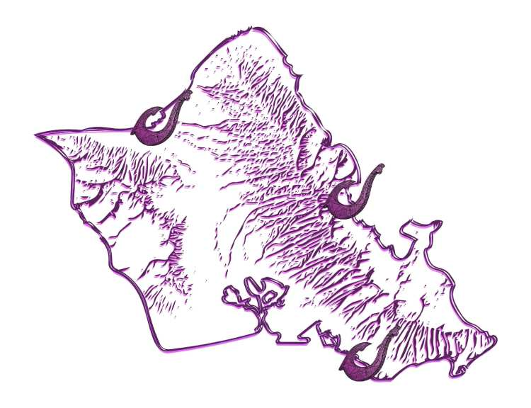 Honolulu Hawaii Adventures Oahu Tours and Transportation