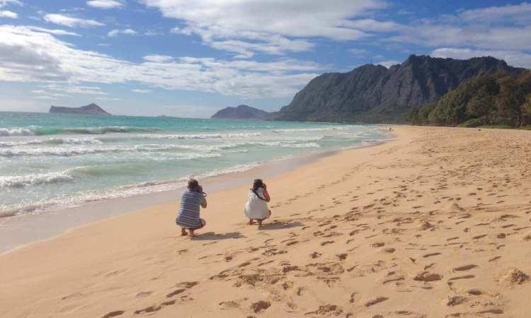 Oahu Custom Island Tour