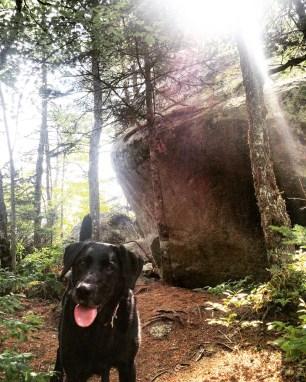 Crowbar Lake Trail in Porters Lake, Nova Scotia Off-Leash Dog Friendly