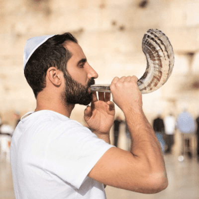 A Beginner's Guide To The Jewish Shofar (horn)