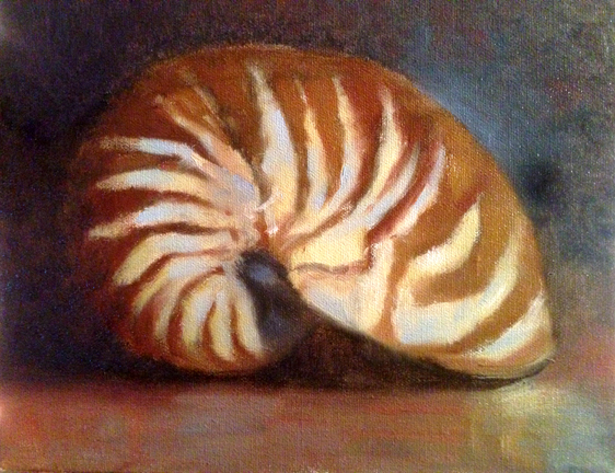 Oil Paint Nautilus Seashell Tutorial