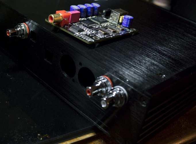 Pic of the ESS + Amanero DAC's Enclosure (Rhodium RCA Plugs w/ insulating washers)