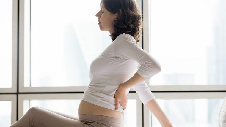Trimester Pertama Kehamilan, Periode Penting dalam Siklus Hamil