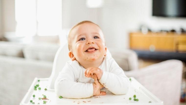 Jadwal Menu Mpasi 6 Bulan Pertama Menurut WHO dan Nutrisi yang Dibutuhkan