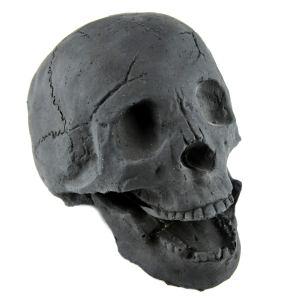 Fireproof Human Skull