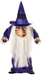 fancy dress halloween wizard mad hatter costume