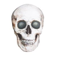 Animated skull canvas