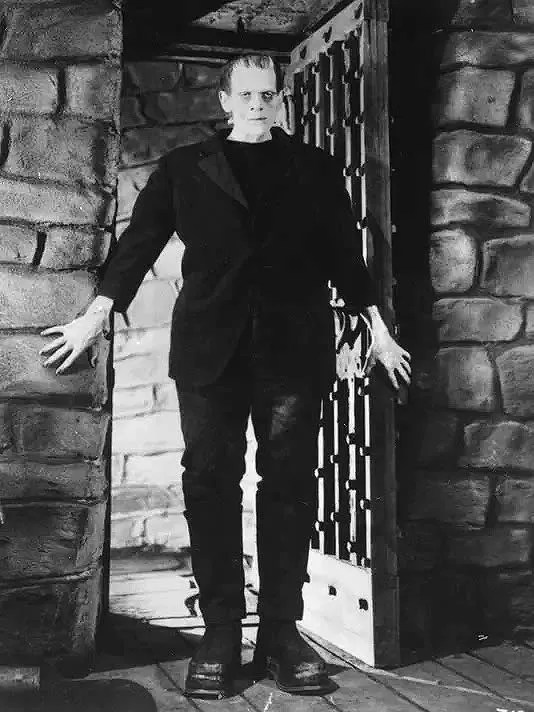Frankenstein (1931) FULL MOVIE 1