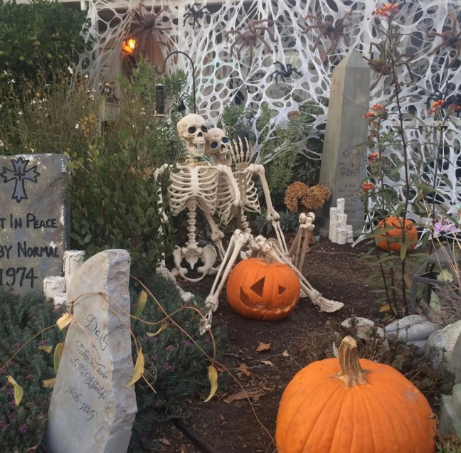 Evil Vines Cemetery Outdoor Yard Haunt Skeleton Props Taking Selfie