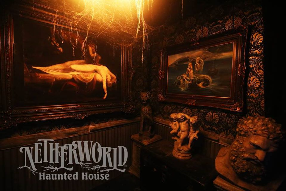 Netherworld Scariest Haunted House Professional Decorated Lair