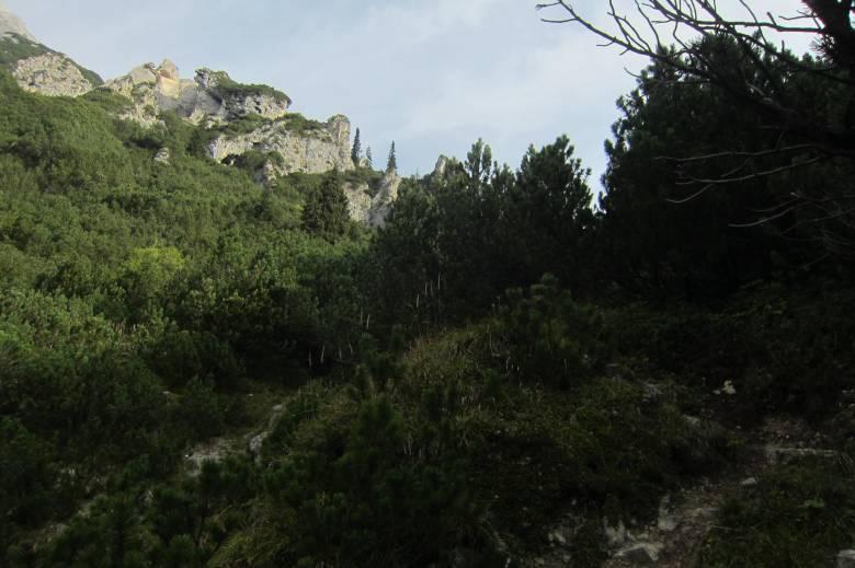 hochwand-mieminger-8