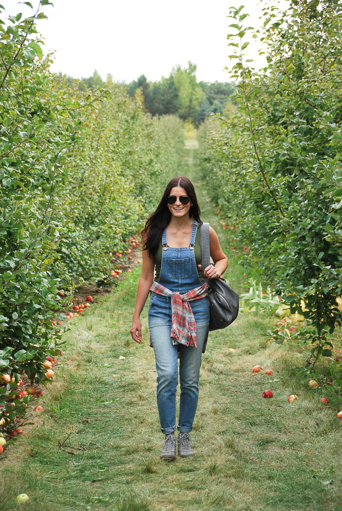 apple orchard in woodstock illinois