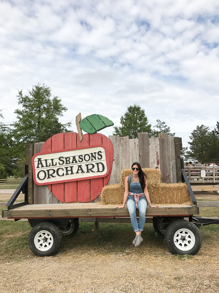 all seasons orchard
