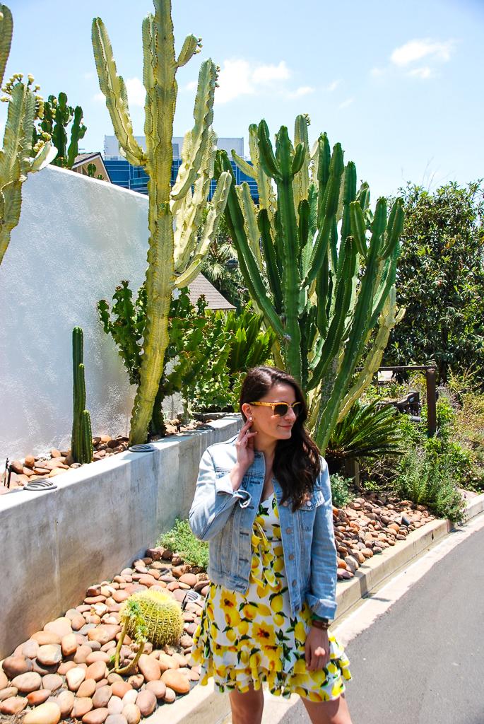 Lemons, Cacti & Denim