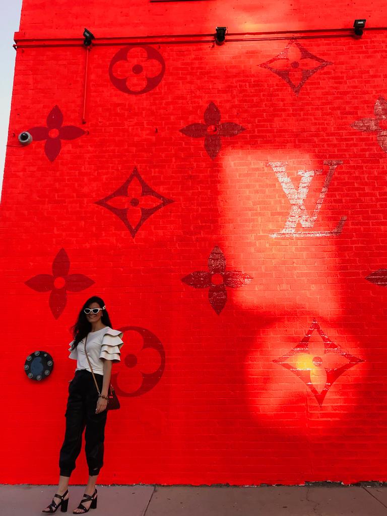 Louis Vuitton Chicago