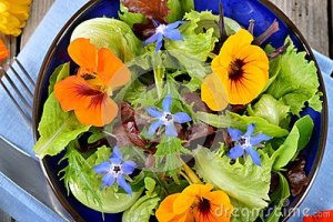salad-edible-flowers-nasturtium-borage-fresh-summer-bowl-top-view-45630396