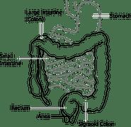 diagram-41638__180
