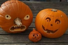 pumpkin-512108__180