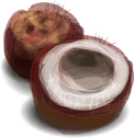 coconut-40328__180