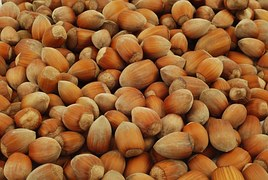 nuts-1012905__180